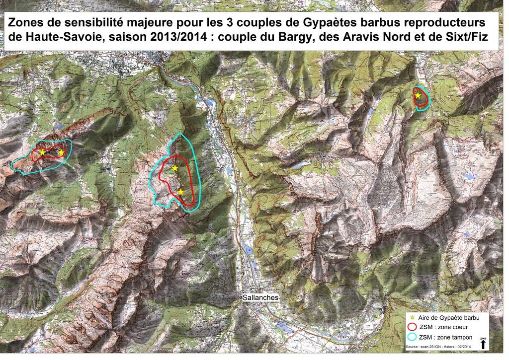 Gypaete1