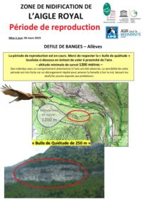 Bulle-quietude-Aigle-Royal-Alleves-06-03-2019